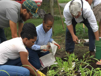 4 Community garden - people planting