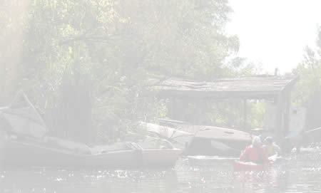 Photo of a Ray of Light while canoeing on the Rouge River