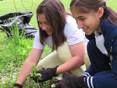 Two girls planting garlic mustard
