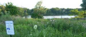 View of the grassland along the Rouge River