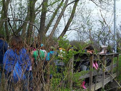 Volunteer group walking in the woods, crossing a footbridge along the river