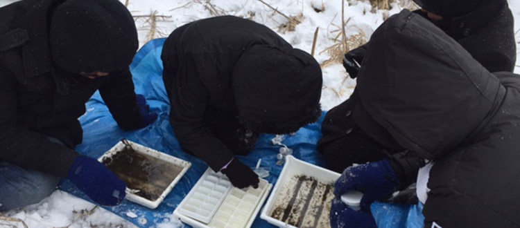 Volunteers recording data during a Stonefly search