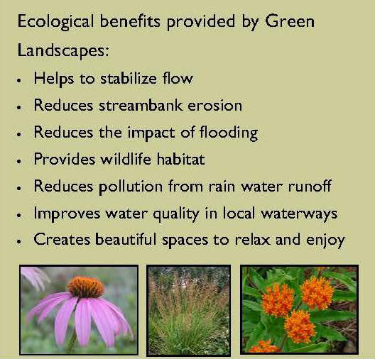 Yard - Ecological benefits of green landscaping