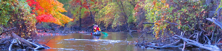 Rouge River Water Trail in the Fall, full colors