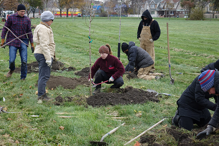Citizen forester Lindsey Schad removes wire from tree she and Peggy Harp are planting in Patton Park, view facing northeast towards Woodmere Street