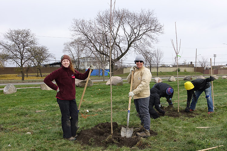 Citizen foresters Lindsey Schad and Peggy Harp plant a Green Mountain Sugar Maple in Patton Park, view facing northwest towards Dix Avenue