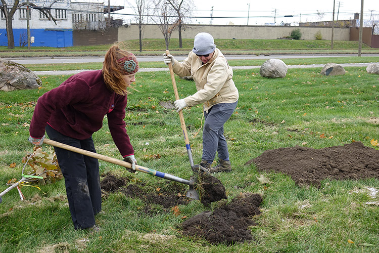 Citizen foresters Lindsey Schad and Peggy Harp dig a tree hole in Patton Park, view facing northwest towards Dix Avenue
