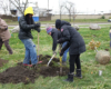 Greening of Detroit employee Ayatallah el Amin (left, yellow hood) digs a tree hole with citizen foresters Ellen Beeman and Mollika Biernat, view facing northwest towards Dix Avenue