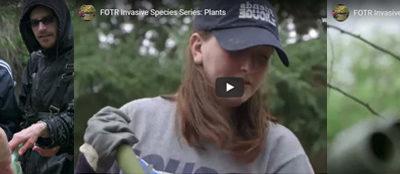 Invasive species video sreenshots