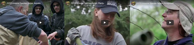 Invasive species video sreenshots