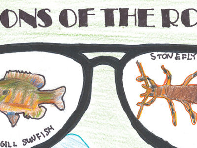Visions of the Rouge 1st Place poster crop - Illustration of glasses with a Bluegill Sunfish and a Stonefly