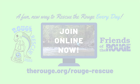 Rouge Rescue - online - faded