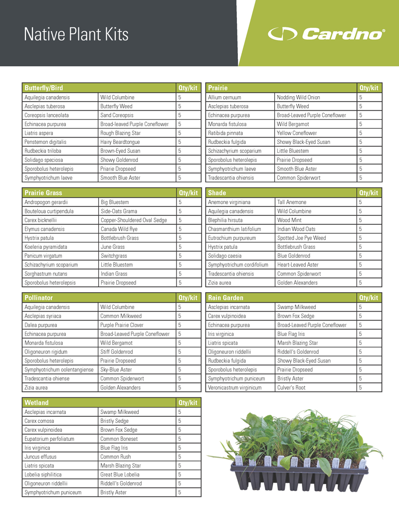 native plant kit plant lists