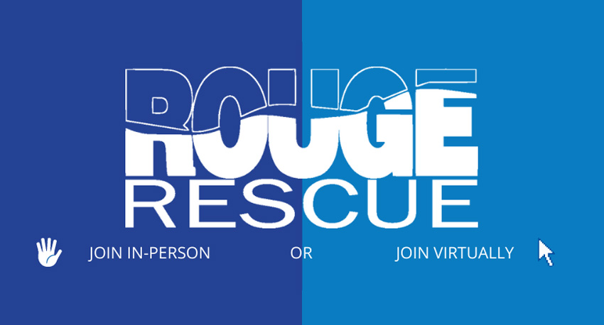 Rouge Rescue