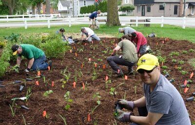Rain Garden Planting Days