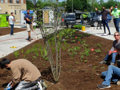 Planting the rain gardens at PARC