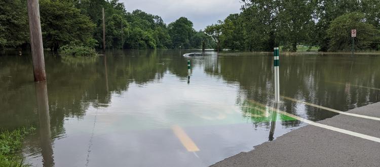 June 2021 Rouge flooding