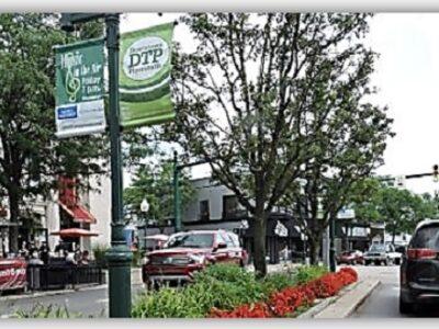 Trees on Main Street Plymouth